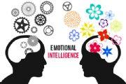 情绪智力量表(EIS)